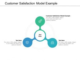 Customer Satisfaction Model Example Ppt Powerpoint Presentation Styles Skills Cpb