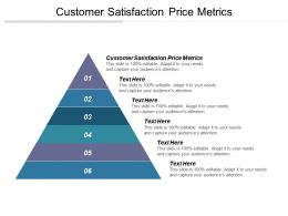 Customer Satisfaction Price Metrics Ppt Powerpoint Presentation File Samples Cpb