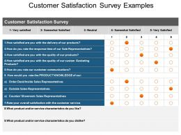 Customer Satisfaction Survey Examples Ppt Slide Show