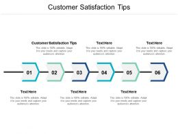 Customer Satisfaction Tips Ppt Powerpoint Presentation Styles Portfolio Cpb