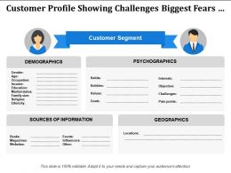Customer Segment Showing Psychographics Source Of Information
