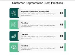 Customer Segmentation Best Practices Ppt Powerpoint Presentation Show Aids Cpb