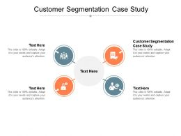 Customer Segmentation Case Study Ppt Powerpoint Presentation Summary Microsoft Cpb