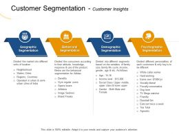 Customer Segmentation Customer Insights As Follows Ppt Powerpoint Presentation File Guide