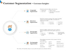Customer Segmentation Customer Insights Below Are Ppt Powerpoint Presentation Slides