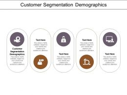 Customer Segmentation Demographics Ppt Powerpoint Presentation Show Maker Cpb