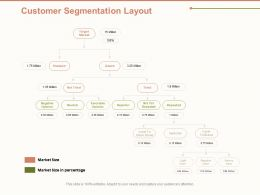 Customer Segmentation Layout Ppt Powerpoint Presentation Icon Introduction