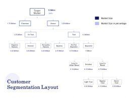 Customer Segmentation Layout Ppt Powerpoint Presentation Outline Structure