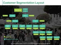Customer Segmentation Layout Ppt Summary Graphics Tutorials