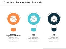 Customer Segmentation Methods Ppt Powerpoint Presentation Infographics Example File Cpb