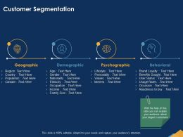 Customer Segmentation Occupation Powerpoint Presentation Graphics Download