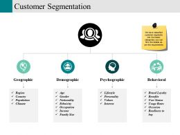 Customer Segmentation Powerpoint Slides Templates