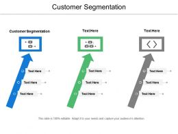 Customer Segmentation Ppt Powerpoint Presentation Icon Format Cpb