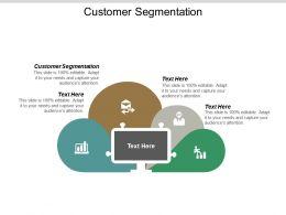 Customer Segmentation Ppt Powerpoint Presentation Outline Themes Cpb