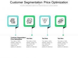 Customer Segmentation Price Optimization Ppt Powerpoint Presentation Gallery Designs Cpb
