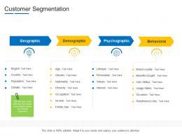 Customer Segmentation Product Channel Segmentation Ppt Background