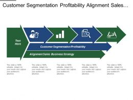 Customer Segmentation Profitability Alignment Sales Business Strategy