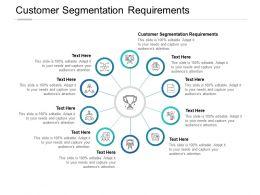 Customer Segmentation Requirements Ppt Powerpoint Presentation Topics Cpb