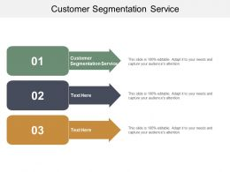 Customer Segmentation Service Ppt Powerpoint Presentation File Example Cpb