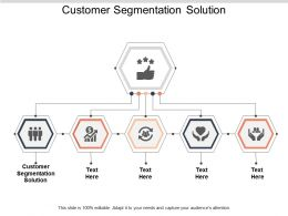 Customer Segmentation Solution Ppt Powerpoint Presentation Ideas Infographics Cpb