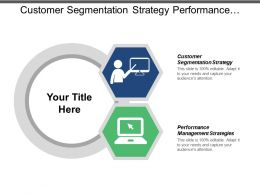 Customer Segmentation Strategy Performance Management Strategies Roadmap Strategy Cpb