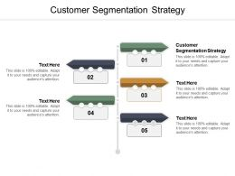 Customer Segmentation Strategy Ppt Powerpoint Presentation File Graphics Example Cpb