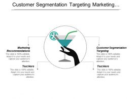 Customer Segmentation Targeting Marketing Recommendations Marketing Performance Executive Reporting Cpb