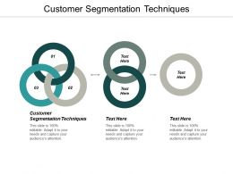 Customer Segmentation Techniques Ppt Powerpoint Presentation Pictures Elements Cpb