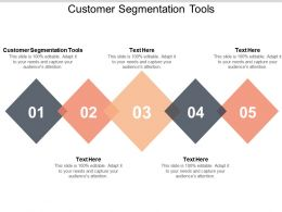 Customer Segmentation Tools Ppt Powerpoint Presentation Infographic Template Portfolio Cpb
