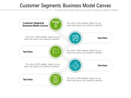 Customer Segments Business Model Canvas Ppt Powerpoint Presentation File Topics Cpb