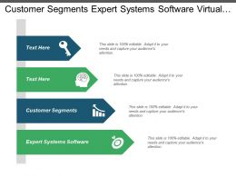 Customer Segments Expert Systems Software Virtual Teams Conflicts Ppt Cpb