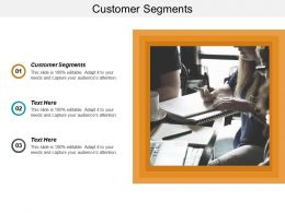 Customer Segments Ppt Powerpoint Presentation File Background Image Cpb