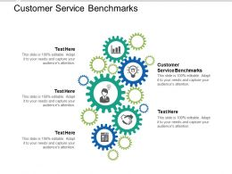 Customer Service Benchmarks Ppt Powerpoint Presentation Gallery Graphics Design Cpb