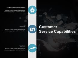 Customer Service Capabilities Ppt Powerpoint Presentation Layouts Brochure Cpb