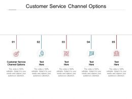 Customer Service Channel Options Ppt Powerpoint Presentation Slides Cpb