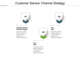 Customer Service Channel Strategy Ppt Powerpoint Presentation Slides Icons Cpb
