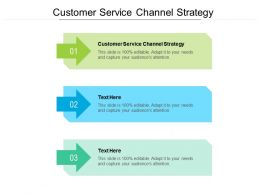 Customer Service Channel Strategy Ppt Powerpoint Presentation Summary Example File Cpb