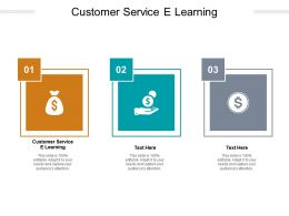 Customer Service E Learning Ppt Powerpoint Presentation Summary Rules Cpb