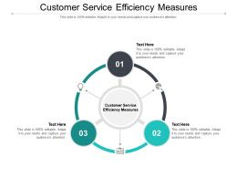 Customer Service Efficiency Measures Ppt Powerpoint Presentation Inspiration Deck Cpb