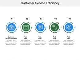 Customer Service Efficiency Ppt Powerpoint Presentation Pictures Introduction Cpb