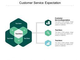 Customer Service Expectation Ppt Powerpoint Presentation Slides Design Inspiration Cpb