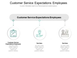 Customer Service Expectations Employees Ppt Powerpoint Presentation Layouts Guidelines Cpb