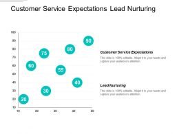 Customer Service Expectations Lead Nurturing Rewards Recognition Framework Cpb