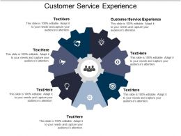 Customer Service Experience Ppt Powerpoint Presentation Ideas Outline Cpb