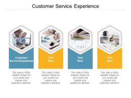 Customer Service Experience Ppt Powerpoint Presentation Show Diagrams Cpb