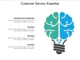 Customer Service Expertise Ppt Powerpoint Presentation Icon Example Cpb
