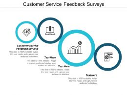Customer Service Feedback Surveys Ppt Powerpoint Presentation Gallery Maker Cpb
