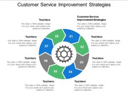 Customer Service Improvement Strategies Ppt Powerpoint Presentation Professional Designs Cpb