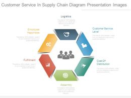 Customer Service In Supply Chain Diagram Presentation Images