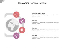 Customer Service Levels Ppt Powerpoint Presentation Icon Graphics Cpb